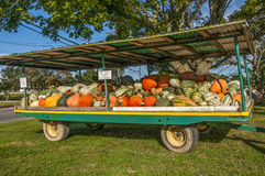Harvest Time. A large farm trailer offering gourds of all sizes, shapes and colors for sale Stock Photo