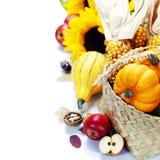 Harvest time, pumpkins Stock Images