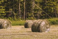 Harvest time in Quebec, Canada. Farmers pick hay about twice a summer. This hay will be used to feed their animals. This photo was taken in the summer of 2017 Royalty Free Stock Photography