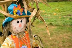 Harvest-time scarecrow Royalty Free Stock Photos