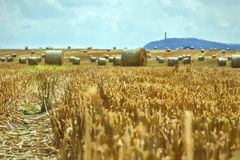 Harvest time - straw bales in a field Royalty Free Stock Images
