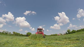 Harvest time in the summer movie with sound Royalty Free Stock Photography