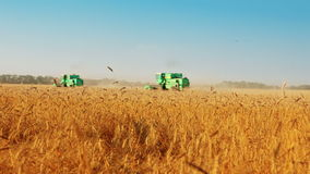 Harvest time. Summer. Sunny day. Harvest time. Two combines in wheat field stock footage