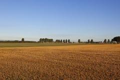 Harvest time sundown Royalty Free Stock Photo