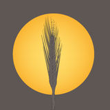 Harvest Time Symbol Stock Photo