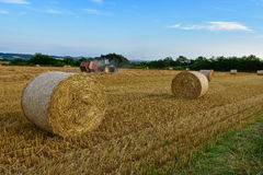 Harvest time. After threshing wheat, straw are raised in large bales Royalty Free Stock Photography