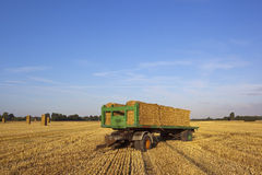 Harvest time trailer Royalty Free Stock Image