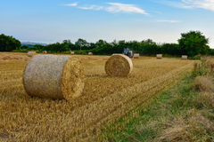 At harvest time. In UK is harvest time. Everything looks more beautiful in the sunset Stock Photography