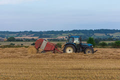 At harvest time Royalty Free Stock Photo