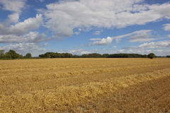 Harvest time in the vale of York Stock Images