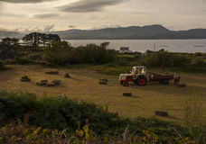 Harvest Time West Cork Royalty Free Stock Images