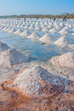 The harvest times of salt and workers in salt evaporation pond. This pond is in SAMUT SONGKHRAM province, Thailand Royalty Free Stock Photo