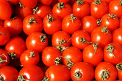 Harvest of tomatoes at farmers market Stock Image