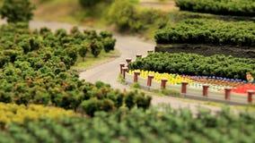 Harvest stock video