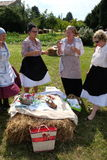 The harvest traditionally begins assembling villagers, singing and dancing and good food. In Nedelisce, Croatia royalty free stock images