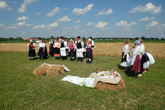 The harvest traditionally begins assembling villagers, singing and dancing and good food. In Nedelisce, Croatia stock image