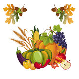 Harvest of Vegetables and Fruits Royalty Free Stock Photo
