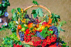 Harvest vegetables, fruits, berries sold at the fair Royalty Free Stock Images