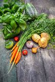 Harvest vegetables with herbs and spices stock images