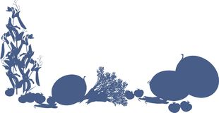 Harvest of vegetables illustration on white background. Harvest of vegetables blue silhouette illustration on white background Stock Image