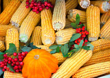 Harvest vegetables sold at the fair Royalty Free Stock Photography