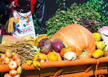 Harvest vegetables sold at the fair Stock Photography