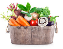 Harvest vegetables in wooden basket Stock Image