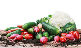 Harvest vegetables on a wooden table isolated Stock Photography