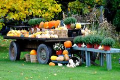 Harvest Wagon Stock Image