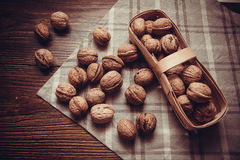Harvest of walnuts Stock Photography