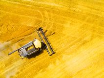 Harvest of wheat field. Aerial view to combine harvester. royalty free stock images