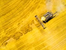 Harvest of wheat field. Aerial view to combine harvester. stock photo