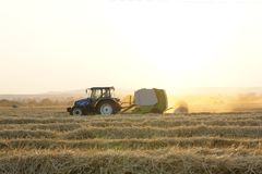 Harvest of wheat. Tractor on the field. Straw after harvest. Sunny summer day Stock Photos