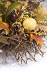 Harvest Wreath 2. A harvest wreath with oak and maple leaves, pine cones, berries, nuts, feathers and other miscellaneous foliage Stock Images