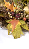 Harvest Wreath 3. A harvest wreath with oak and maple leaves, pine cones, berries, nuts, feathers and other miscellaneous foliage stock photos