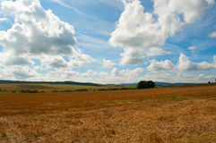 Harvested Agricultural Field Stock Photo