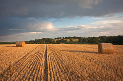 Harvested bays of hay under a stormy sunset sky Royalty Free Stock Photography