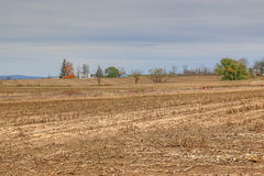 Harvested corn field. With farm house in background on cloudy day Royalty Free Stock Photography