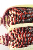 Harvested corn in red and purple Royalty Free Stock Photography