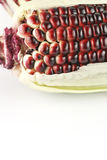 Harvested corn in red and purple colors Stock Photography