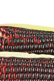 Harvested corn in red and purple colors Stock Image