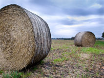 Harvested crops in farm field. With moody autumn sky as backdrop Stock Photography