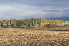 Harvested Crops in the Fraser Valley Royalty Free Stock Images