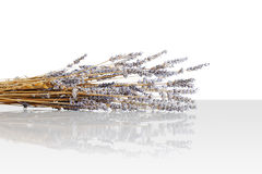 Harvested, dried lavender bouquet Stock Photos
