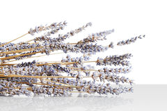Harvested, dried lavender bouquet Stock Images