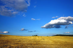 Harvested field and clouds. Landscape,harvest and blue sky with clouds Royalty Free Stock Image