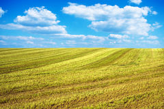 Harvested field lines Stock Photos