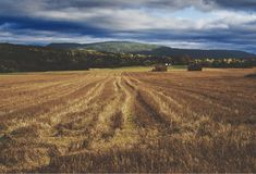 A harvested field in Norway. A rural scenery overlooking a newly harvested field in Telemark, Norway Royalty Free Stock Photography