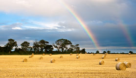 Harvested field after the rain. Rainbow appears in the cloudy sky after the rain stock photo