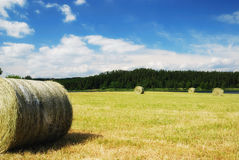 Harvested field with straw bales Royalty Free Stock Images